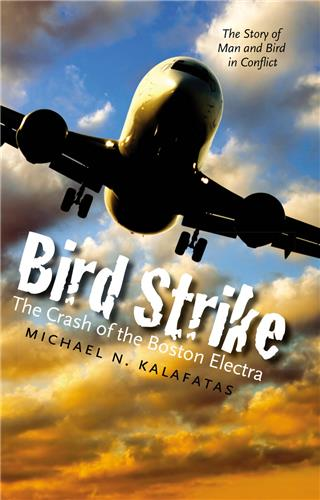 Book cover image for Bird Strike