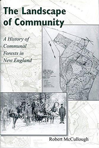 Book cover for The Landscape of Community