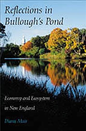 Book cover for Reflections in Bullough's Pond