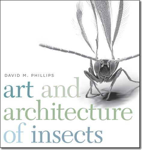 Book cover for Art and Architecture of Insects