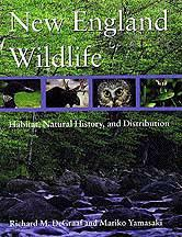 Book cover for New England Wildlife