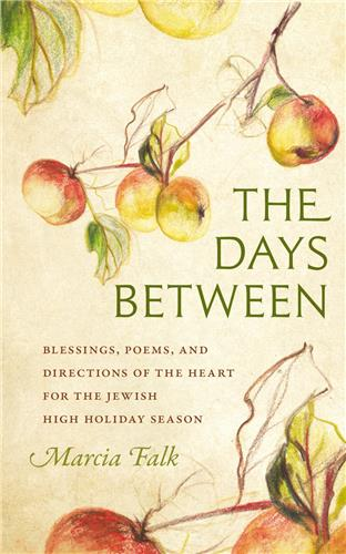 Book cover for The Days Between