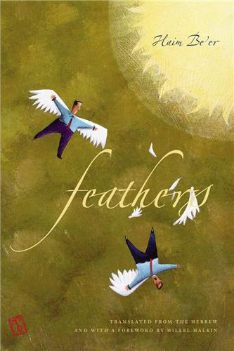 Book cover for Feathers