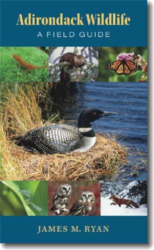 Book cover image for Adirondack Wildlife