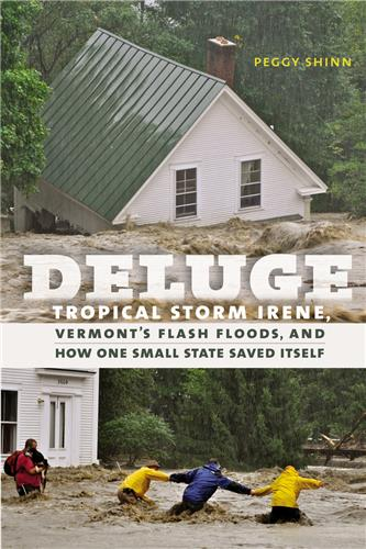 Book cover for Deluge