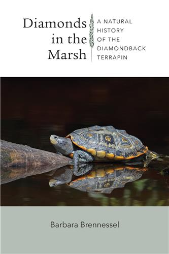 Book cover for Diamonds in the Marsh