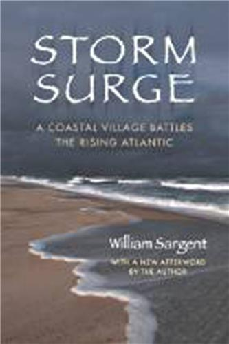 Book cover for Storm Surge