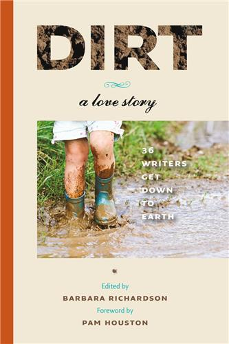 Book cover image for Dirt